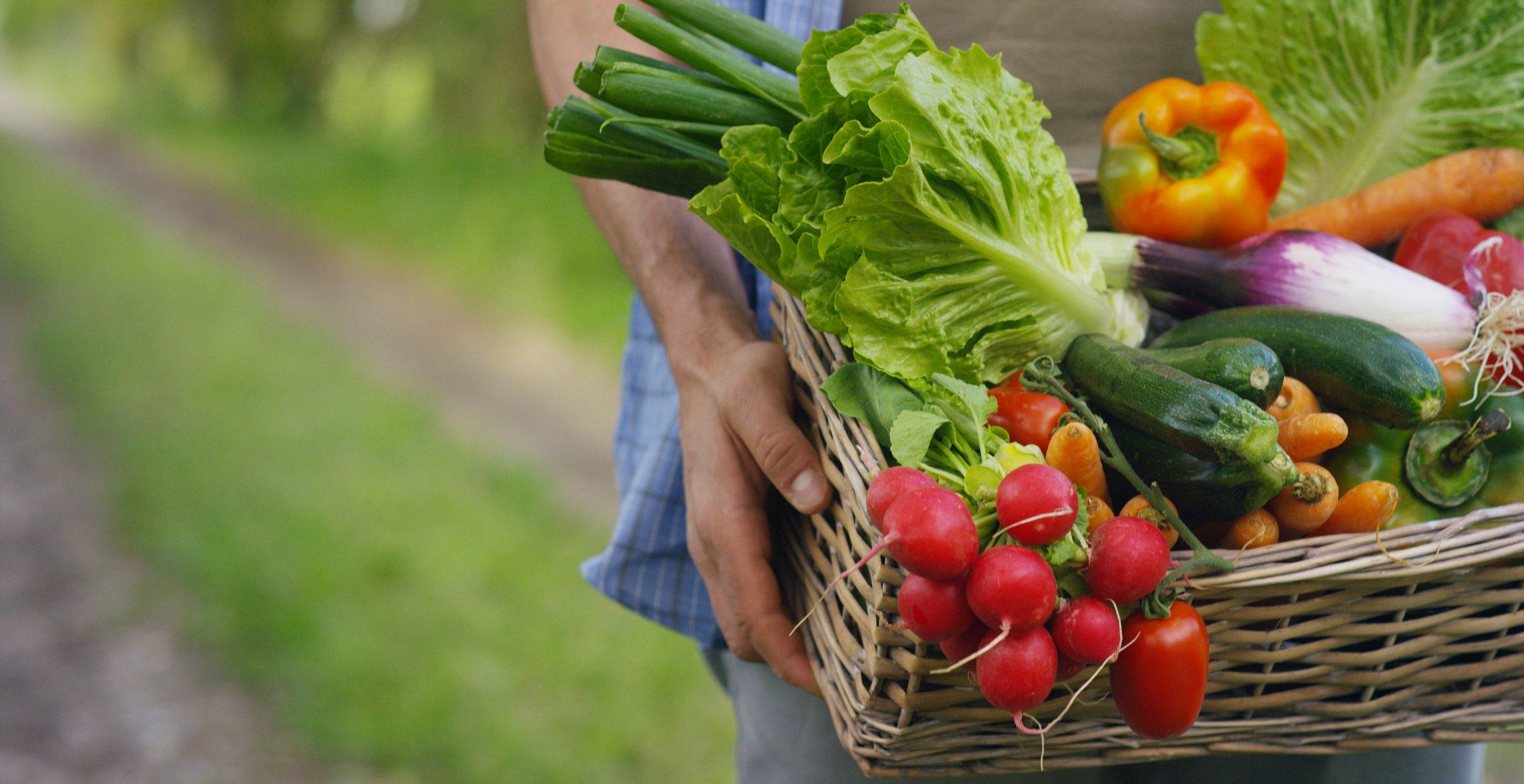 verschillende-groenten